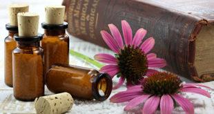 Homöopathie Nebennierenschwäche